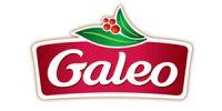 galeo-2018