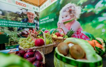 Deco fruct stand